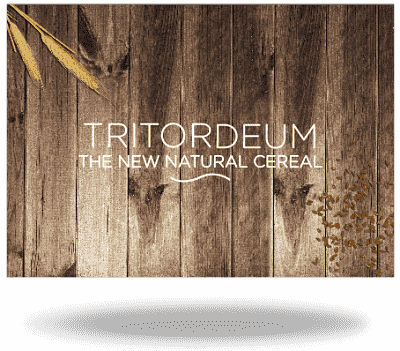 Recipe Book of Tritordeum